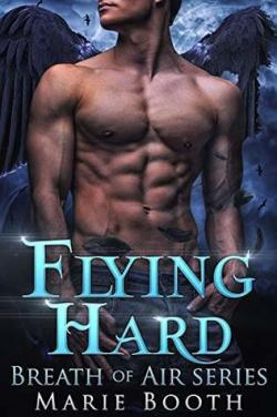 Flying Hard (Santa Cruz Shifters #1) par Marie Booth