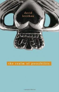 The Realm of Possibility par David Levithan